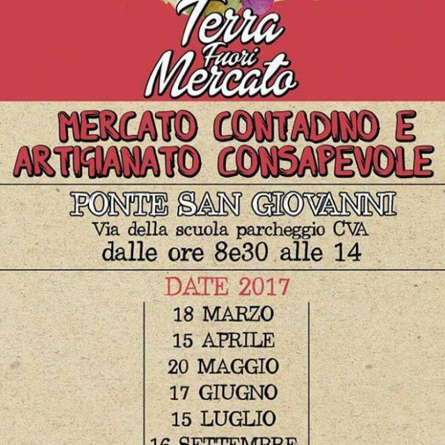 TERRA FUORI MERCATO - MERCATO CONTADINO